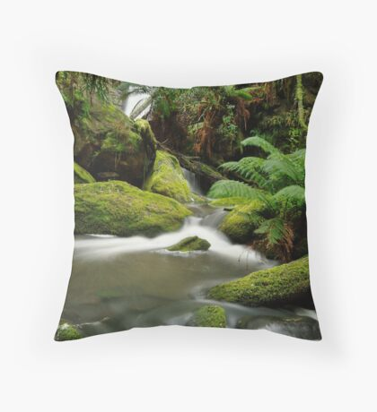 Yannathan Falls - Great Otways National Park Throw Pillow
