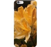 Rhododendron flowers iPhone Case/Skin