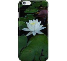 Luminous iPhone Case/Skin