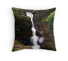 Adams Falls at Ricketts Glen Throw Pillow