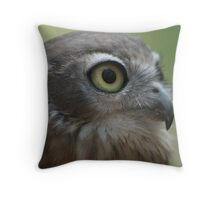 What big eyes you have! - Darwin, NT Throw Pillow