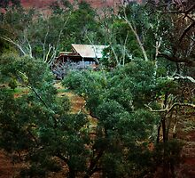 Bush Cottage, Bridgetown, Western Australia by Elaine Teague