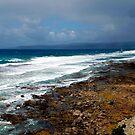 Aireys Inlet Coast by John  Kowalski
