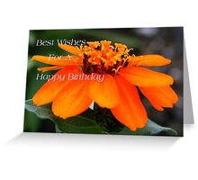Best Wishes For A Happy Birthday Greeting Card