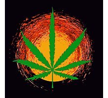 Marijuana Leaf and the Sun Photographic Print