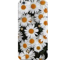 Aster Flowers iPhone Case/Skin