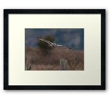 Daylight Manoeuvres Framed Print