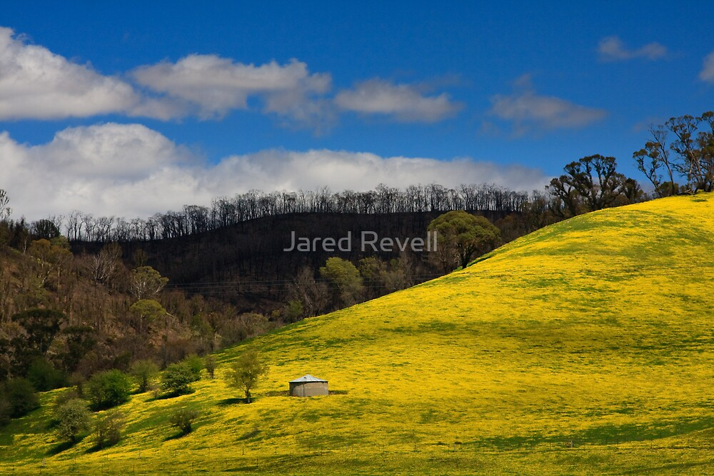 Clash of Seasons by Jared Revell