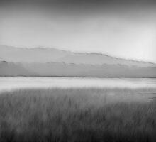 Misty Lake III by Jurgen  Schulz