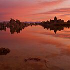 Mono Lake at Dawn by Zane Paxton