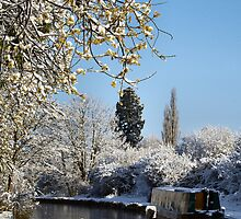 Snowy canal by citrineblue