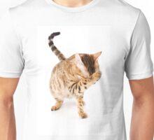 Fluffy red kitten Unisex T-Shirt