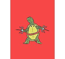 Hatchling Ordinary Ninja Turtles - Raf Photographic Print