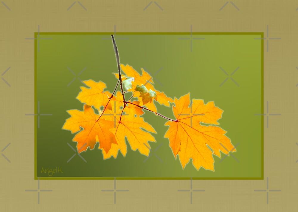 Autumn Leaves by AngelHoney