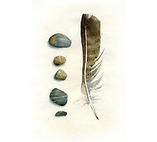 Stones and feather Photographic Print