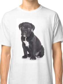Black Cane Corso puppy Classic T-Shirt