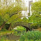Central Park, New York City by Jeff Blanchard