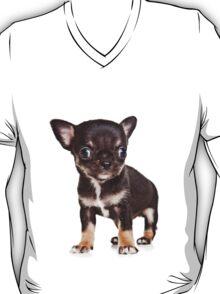 BROWN Chihuahua puppy T-Shirt
