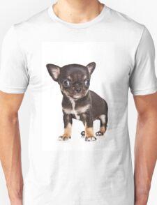BROWN Chihuahua puppy Unisex T-Shirt