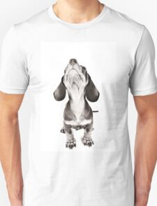 Funny dachshund with a big nose T-Shirt