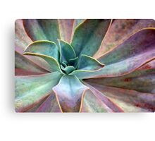 Organic Beauty Canvas Print