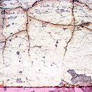 cracks in the wall by Lynne Prestebak