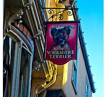 The Yorkshire Terrier  (Pub Sign) Photographic Print