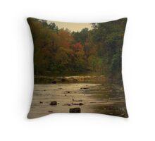Autumn in the Ozarks Throw Pillow
