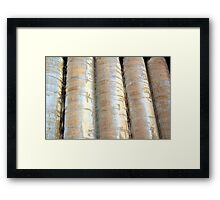 Silo City Framed Print