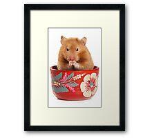 Funny red-haired hamster Framed Print
