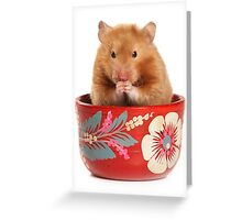 Funny red-haired hamster Greeting Card