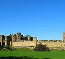 Alnwick Castle by Reinhardt