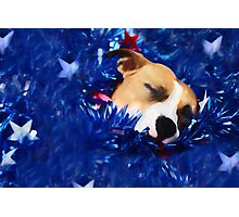 Cradled by a Blanket of Stars and Stripes Photographic Print