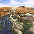 Stanage Edge by Graham Clark