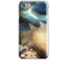 Sea-Through iPhone Case/Skin