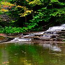 Ithaca's Buttermilk falls III by PJS15204