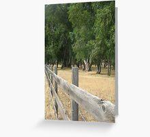 Field of Eucalyptus Greeting Card