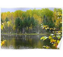 The Colors Of Autumn,Scenery Poster