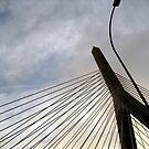 Zakim Bridge, Boston, MA by gailrush
