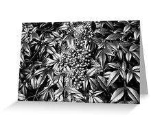 B/W Leaves and Berries  Greeting Card