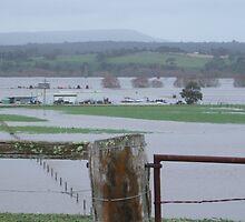 flood by spiritofthebush