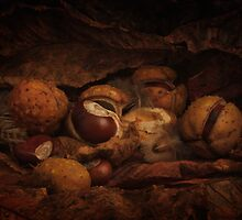 Stoop to Conkers by Gazart