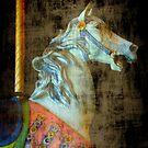 My horse..... by DaveHrusecky