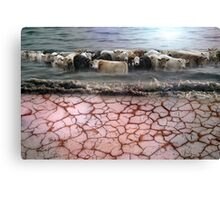 Global Warming? Whos Fault? Canvas Print
