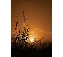 Waning Light Photographic Print