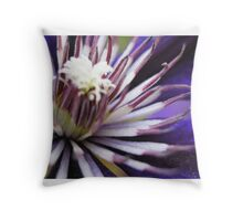 Shades of Shanklin 4 Throw Pillow