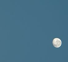 Morning Moon by peacegirl