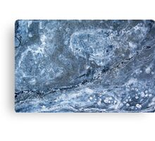 Flurrious Canvas Print