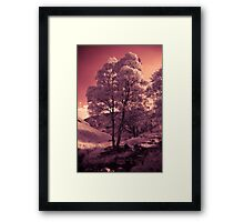Walking in the Dream Wood - The Hill Framed Print