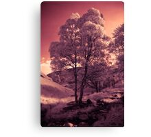 Walking in the Dream Wood - The Hill Canvas Print